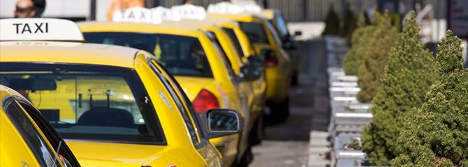 Row of yellow taxi cabs