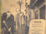 Silva Bolds and Mayor Leupke planting the first tree of the ambitious downtown tree planting program, Nov 1965