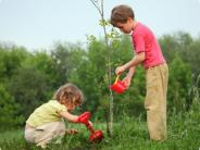 Children watering a young tree
