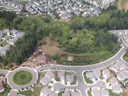 Aerial photo of the Fishers Creek neighborhood