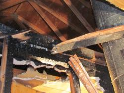 """Photo of damage from a home fire caused by fireplace """"over-firing"""""""