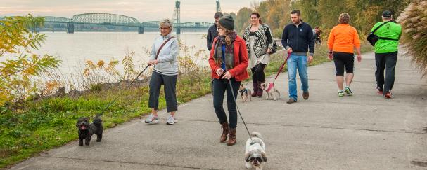 Group of dog walkers on the Waterfront Renaissance Trail in Vancouver