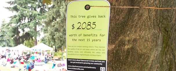 tree value tag