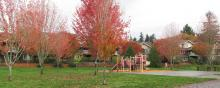 Playground at Ellsworth Springs Park in Vancouver, Washington