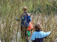 Critter Count - Boys in Reeds