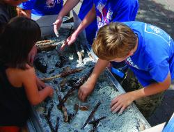 Kids explore ecosystems and try their hands at a mini-stream restoration during the 2013 Sturgeon Festival.