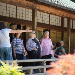 Seniors during a trip to the Portland Japanese Gardens