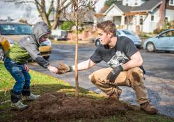 Two volunteers plant a tree in the Uptown Village area of Vancouver