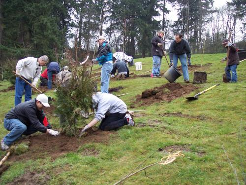 school tree planting city of vancouver washington